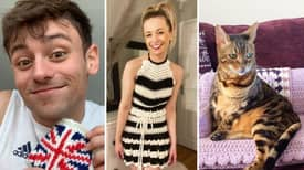 Tom Daley's Best Knitting Designs: From Gucci Dress To Cat Couch