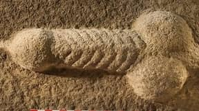 Stone-Carved Penis Found In Archaeological Dig Of Roman Site