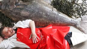 Fishmonger Poses With Six-Foot 'Beast' Halibut Weighing 77kg