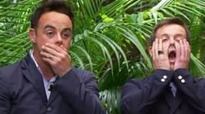 I'm A Celebrity Theme Park Is Coming To The UK This Year