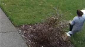 Package Thief Gets Instant Karma As She Slips And Breaks Her Leg