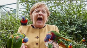 German Chancellor Angela Merkel Did Not Have A Fun Time With Australian Lorikeets