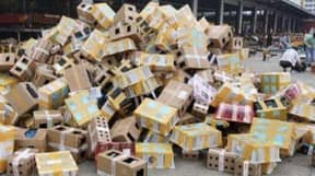 5,000 Cats, Dogs And Other Animals Found Dead In Packages