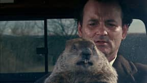Sky Cinema Comedy Is Playing 'Groundhog Day' For 24 Hours