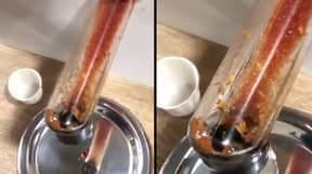 'Maggots' Found Wriggling In McDonald's Ketchup Dispenser