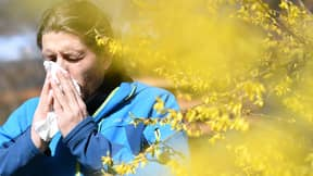 Expert Explains Why Your Hay Fever Feels Worse This Year