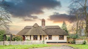 Thatched Cottage That Backs Onto Tiger Enclosure On Sale For £375,000