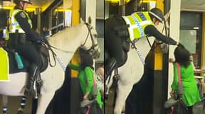 Woman Punches Police Horse Before Officer Grabs Her Hair And Throws Her To The Ground
