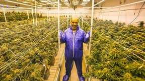 Mike Tyson Kicks Off 4/20 Being Interviewed While High