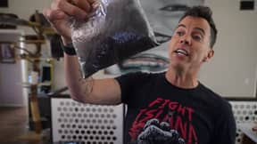 Steve-O Is Asking Men To Donate Their Pubes So He Can Make 'Sasquatch Suit'