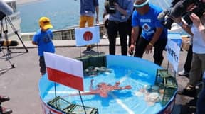 Psychic Octopus Boiled Up And Eaten Despite Impressive World Cup Predictions