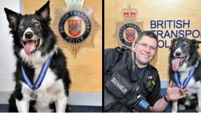 Police Dog Honoured For His Bravery At The Manchester Arena Attack