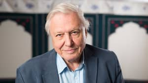 Sir David Attenborough Opens Up About His Health Problems