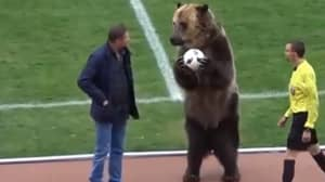 Russian Football League Criticised As Bear Is Brought Out Before Match