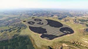 China Has Built A Solar Power Plant Shaped Like A Panda