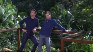 I'm A Celebrity...Get Me Out Of Here! Viewers Get Distracted By Dec's 'Bulge'