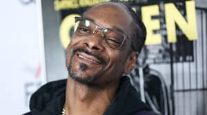 Snoop Dogg Is Releasing A Lullaby Album Adapting His Greatest Hits For Babies