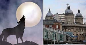 Panic In UK City After Sightings Of 'Eight-Foot Werewolf'