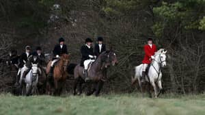 People Are Outraged As Hundreds Of Hunts Go Ahead In Boxing Day Tradition