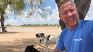 Pen Farthing And His Rescue Dogs To Board Afghanistan Evacuation Flight