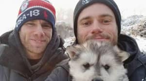 Olympics Skier Helps Close South Korean Dog Meat Farm