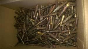Little Girl Finds Over 300 Bullets While Out Fishing With Family