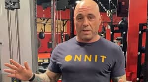 Joe Rogan Reveals Ripped Physique After Following The Carnivore Diet