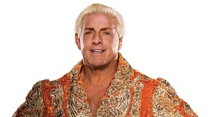 Ric Flair Pictured Surrounded By WWE Divas Ahead Of Wrestlemania