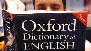 Study Finds People Who Always Point Out Grammar Mistakes Are Uptight