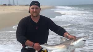 Fishermen Slammed For Using Shark To Open Can Of Beer