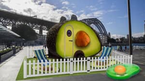 You Can Now Stay In An 'Avo-Condo' In Australia