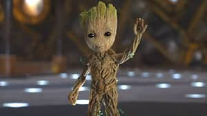 Groot's Last Word To Rocket Has Been Revealed And It's So Heartbreaking