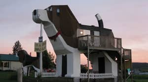 There's A House In The Shape Of A Giant Dog On Airbnb