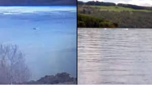 Woman Claims To Capture Nessie On Loch Ness Webcam