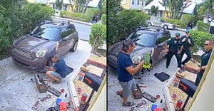 Neighbour Mistakes Parrot For Woman Screaming For Help
