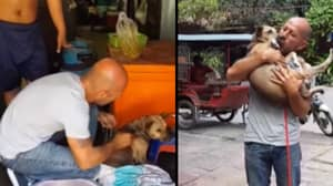 Dog Narrowly Escapes Death After Man Rescues Her From A Slaughterhouse