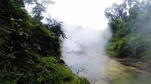 There's A River So Hot In The Amazon That It Actually Boils People