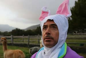 Ridiculous Picture Of Robert Downey Jr. In A Bunny Suit Sparks Epic Photoshop Battle