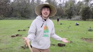 Group Of YouTubers Launch Fundraiser To Plant 20 Million Trees
