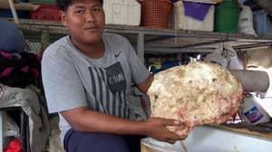 Fisherman Finds Lump Of Whale Vomit Worth £171,000