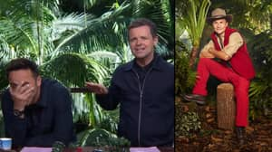 People Think They Know The Real Reason Dec Keeps Rinsing Dennis Wise On 'I'm A Celebrity'