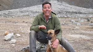 'Jackass' Star Steve-O Shows Solidarity With Dogs By Getting A Vasectomy