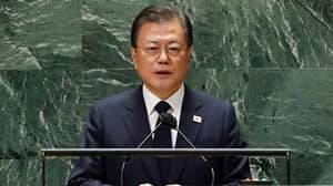 South Korea's President Suggests It Might Finally Be Time To Ban Eating Dog Meat