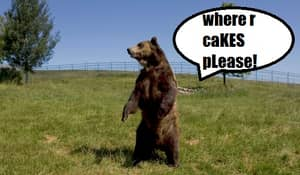 Bear Falls Through Ceiling Into Child's Party, Eats All The Cake