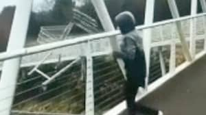 Police Searching For Teen Who Threw Trolley Onto Dual Carriageway