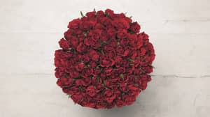 Lidl Is Selling Bunches Of 100 Roses For Just £25 This Valentine's Day