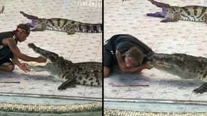 Handler Attacked By Crocodile After Putting Arm In Its Mouth In Front Of Crowd