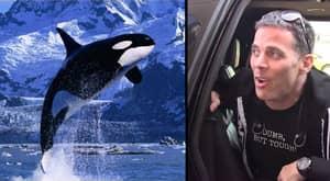 Steve-O Has Spoken Out About SeaWorld Ending Its Breeding Programme