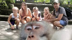Cheeky Monkey Photobombs Family Holiday Snap And Gives Them The Middle Finger