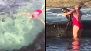 Aussie Woman Doesn't Bat An Eyelid As She Hauls Shark Out Of Oceanside Pool